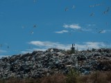 Regional landfill in Novi Sad: Growth of pollution and bureaucracy